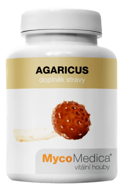 Agaricus_vitalni
